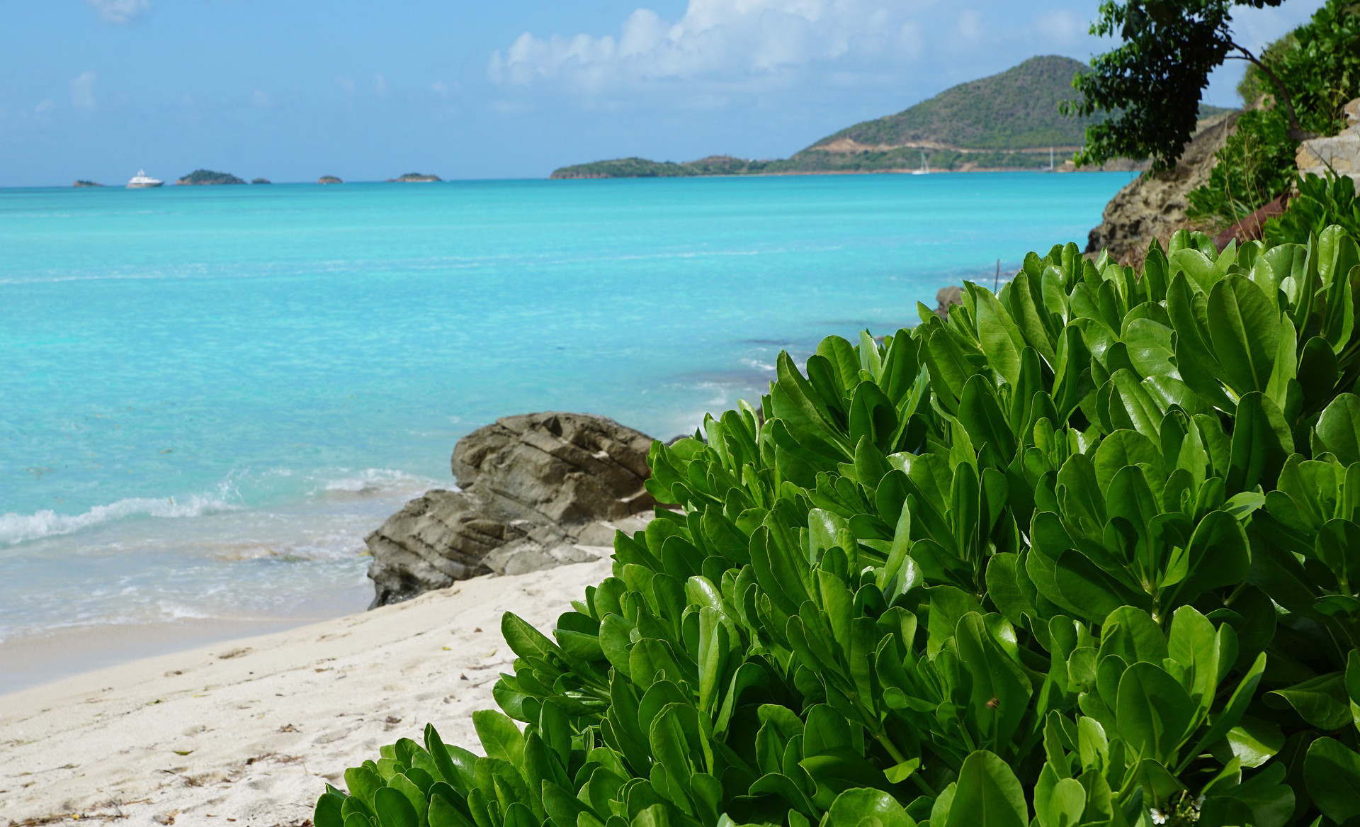news-main-antigua-barbuda-comes-across-all-cool-with-new-campaign.1553597904.jpg