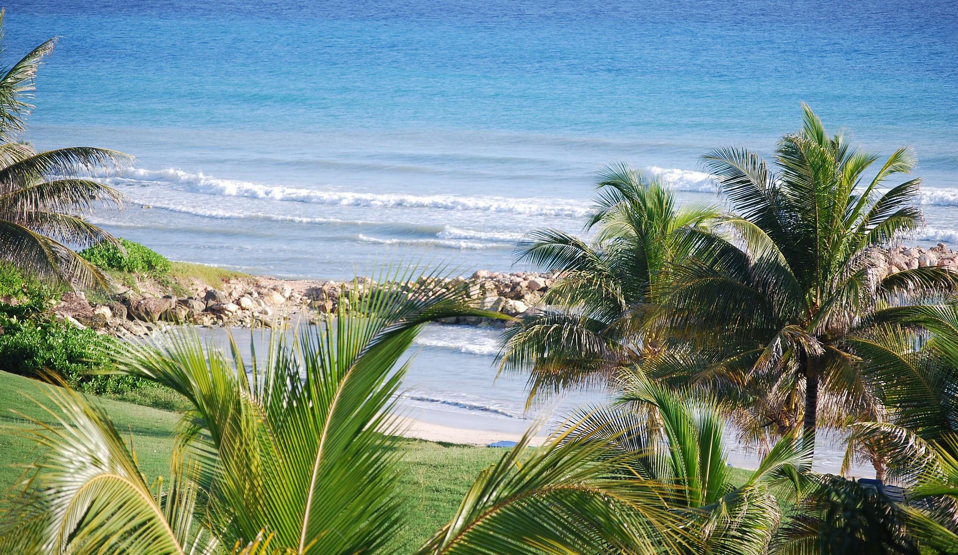 news-main-bartlett-seeks-to-position-jamaica-as-resilience-hotspot.1600860924.jpg