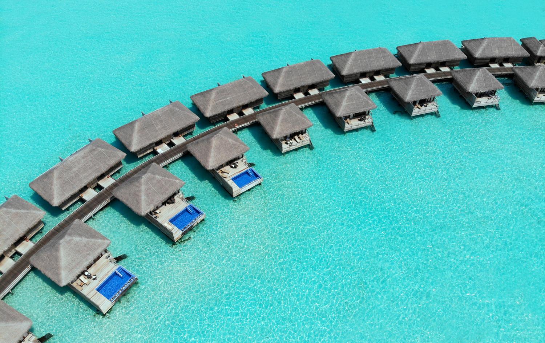 news-main-cocoon-maldives-turns-on-the-tree-of-light.1555319522.jpg