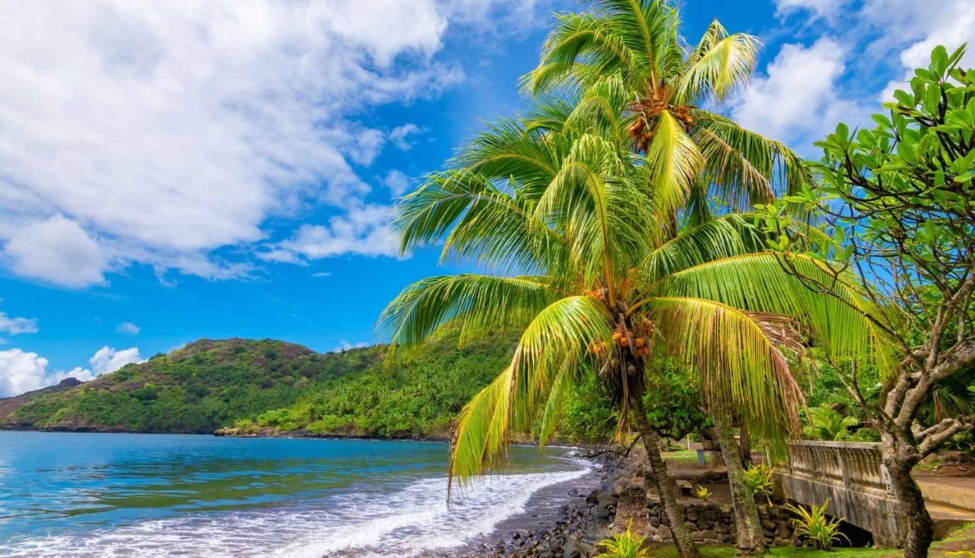 news-main-ponant-enrichit-son-carnet-expeditions-tropicales-pour-la-saison-2020-2021.1578332926.jpg